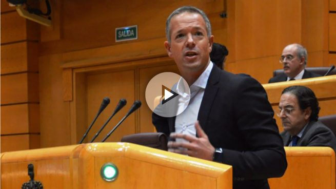 Ander Gil (PSOE) anuncia la retirada de la enmienda para parar el 155 si hay elecciones autonómicas
