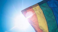 La bandera arcoíris es el símbolo de la comunidad LGTB.