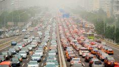 La contaminación, la verdadera enfermedad del siglo XXI (2)