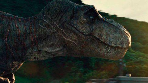 ¿Por qué los Tiranosaurios tenían los brazos tan pequeños (2)
