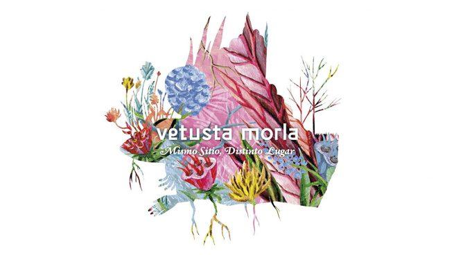 Vetusta Morla presentarán su nuevo disco con una actuación gratuita en la Biblioteca Nacional