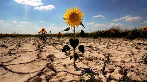 Resultado de imagen de como afecta el cambio climatico a españa