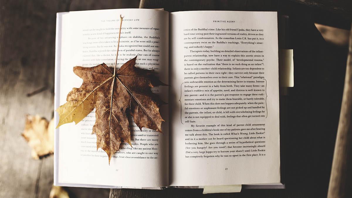 El otoño es una estación tan buena como cualquier otra para leer libros, pero estos son los más recomendados para estos meses