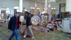 Al menos 305 personas han muerto y 80 han resultado heridas por un ataque con bomba y armas ligeras contra una mezquita en la provincia del norte del Sinaí (Egipto)