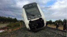 El tren que cibría la línea Málaga-Sevilla descarrilado a la altura de Arahal.