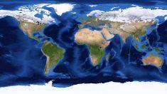 Cada color de la gráfica está relacionado con la evolución de la actividad terrestre.