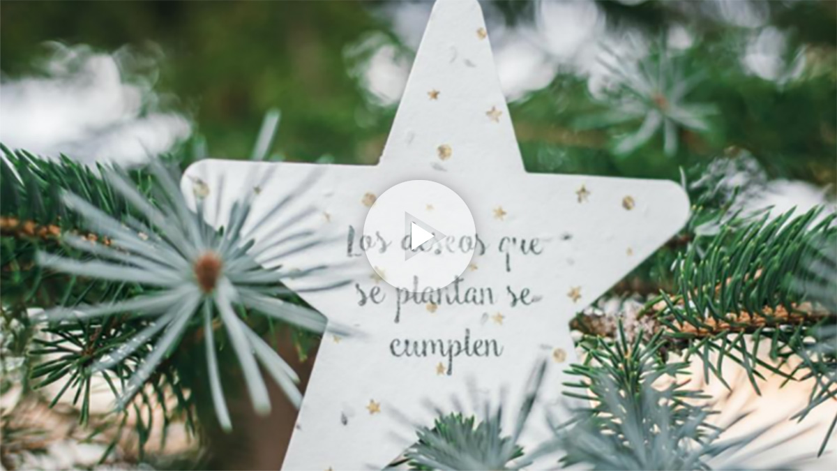 Las tarjetas de Navidad de Sheedo cobran vida: el papel que se transforma en árbol (Foto:Sheedo)