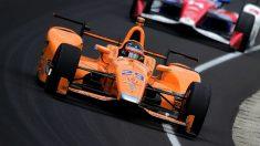 Max Chilton asegura que una victoria de Fernando Alonso este año en Indianápolis hubiese dejado en mal lugar a los pilotos habituales de la IndyCar. (Getty)