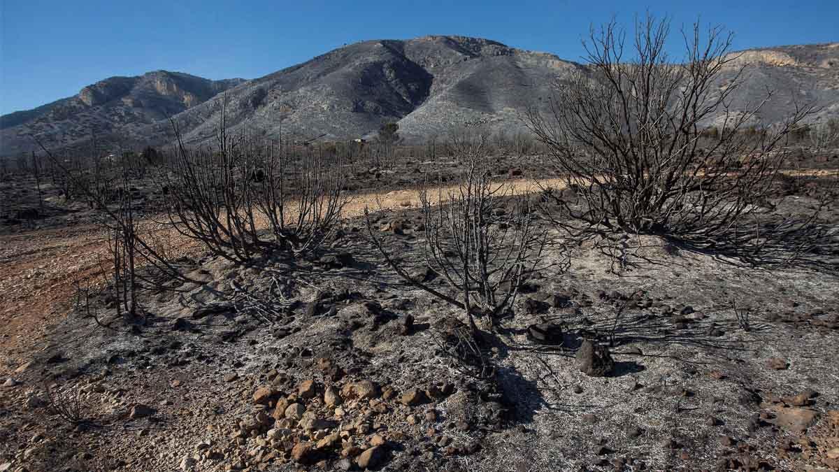 Incendio en Culla (Foto: EFE)