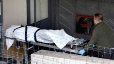 Operarios de la funeraria trasladan el cadáver de Diana Quer. (EFE)