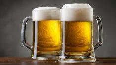 El número de cervezas que te puedes tomar para no dar positivo en un control de alcoholemia varía en función de la persona, aunque lo más recomendable es evitar cualquier tipo de contacto con el alcohol si vamos a ponernos al volante.