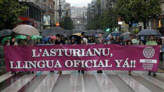 Manifestación a favor de la oficialidad del asturiano en Oviedo (Foto: EFE).