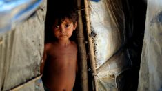 Imagen de un niño rohingya desplazado. (Foto: AFP)