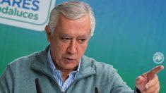 Javier Arenas, vicesecretario de Política Autonómica del PP. (Foto: EFE)
