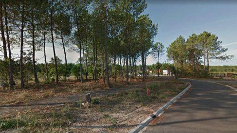 Bosque de Tosse, en Las Landas (Francia), donde se encontró otro zulo con explosivos de ETA