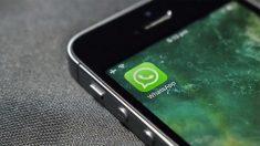 La app Profile Tracker for WhatsApp promete desvelarte qué personas están viendo tu foto de perfil de WhatsApp, pero no es más que otra estafa de internet