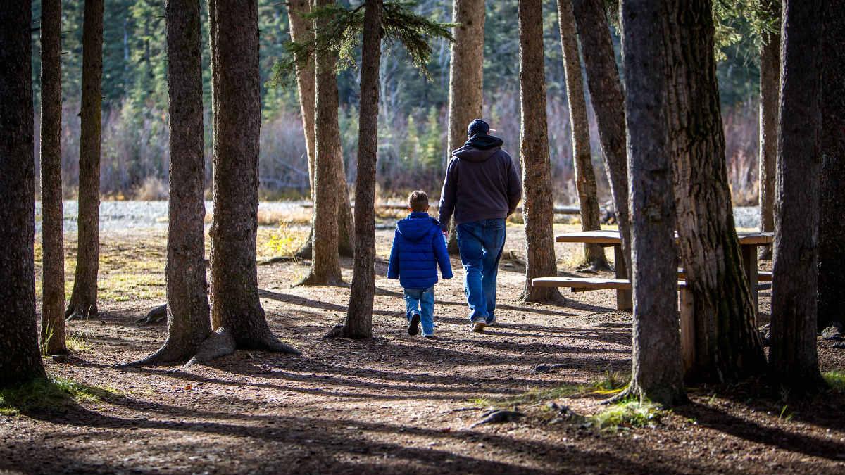 Un padre pasea con su hijo por el bosque.