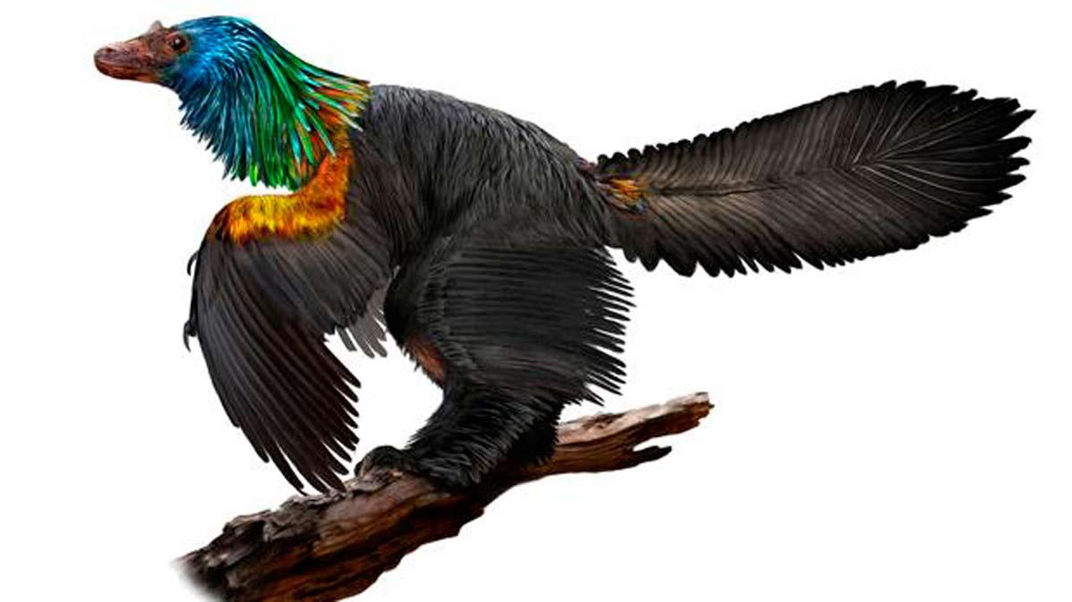Un dinosaurio desconocido hasta la fecha