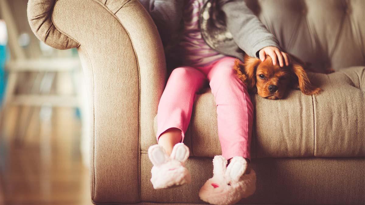 Poner una mascota en tu vida puede ayudarte a mejorar tu rutina y tu salud, además de enseñar lecciones de vida a los más pequeños
