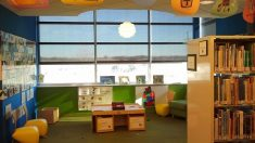 Descubre los motivos más importantes para llevar a los niños a la biblioteca