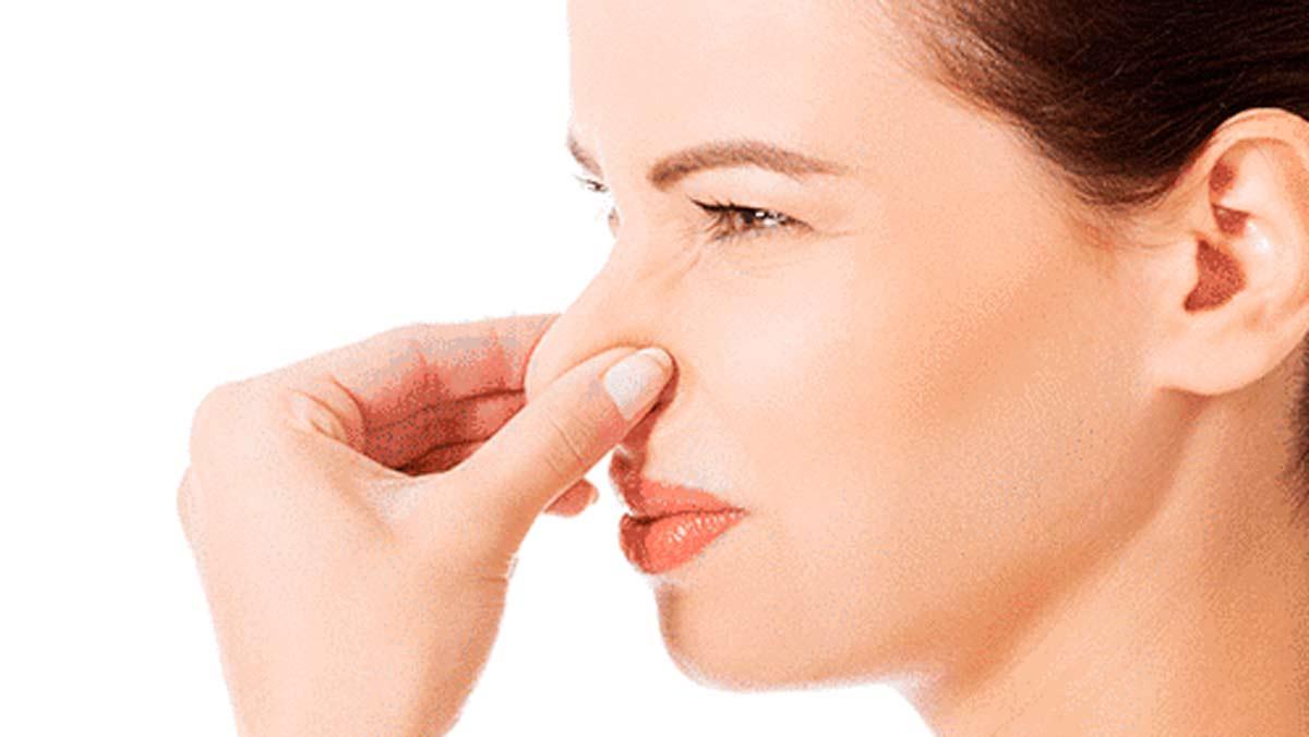 El olfato y sus relaciones con el estrés