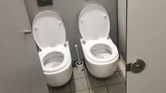 Si vas al baño en el Ikea de Málaga te encontrarás con esta curiosa estampa: dos WC juntos para hacer tus necesidades acompañado.
