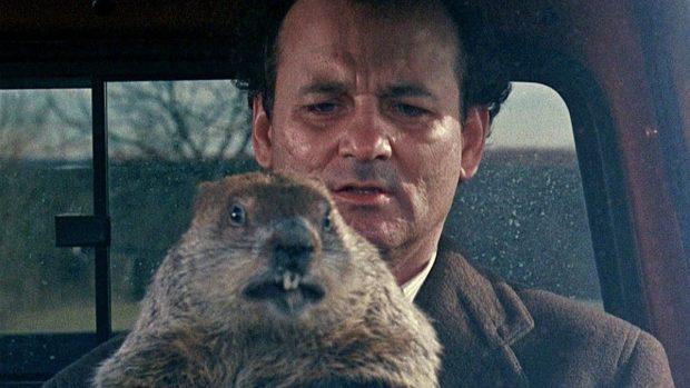 dia de la marmota