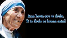 Canonizada en septiembre de 2016, la madre Teresa de Calcuta dedicó su vida a los más pobres y nos regaló numerosas enseñanzas
