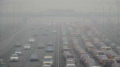 Los gases del diésel son más peligrosos que los de la gasolina (2)