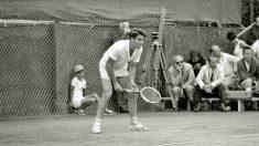 ¿Cuál fue el origen de la Copa Davis?
