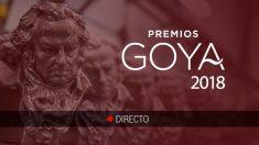 Sigue la última hora de la Gala de los Premios Goya 2018.