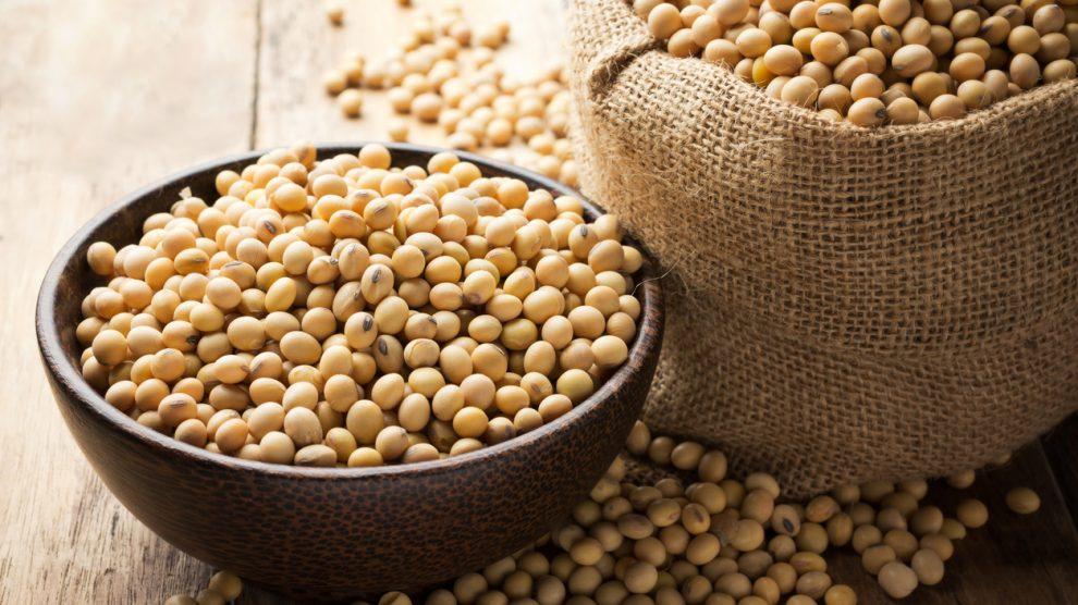 La soja fermentada es más saludable.
