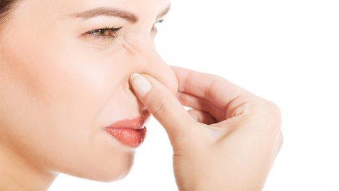 ¿Sabías que cada persona tiene un olor corporal único? Te contamos ésta y otras curiosidades sobre los olores
