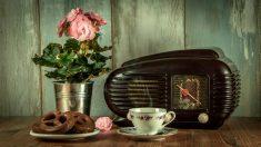 Hoy celebramos el día Mundial de la Radio