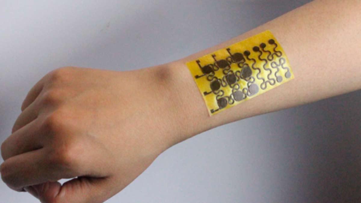 La piel que dará un impulso a la biotecnología (University of Colorado Boulder)