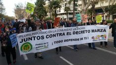 Manifestación en Valencia convocada por el Foro por el Derecho a Elegir Lengua Vehicular.