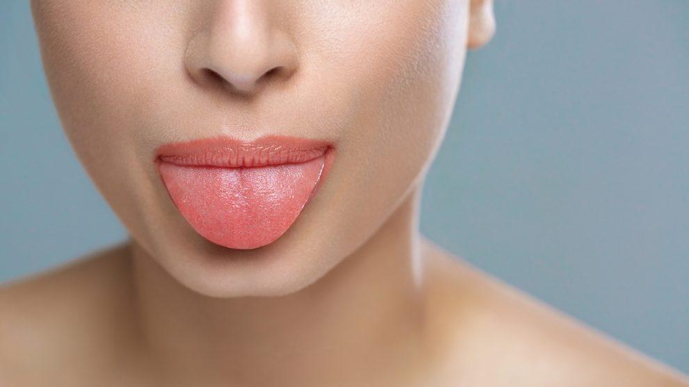 La lengua es un órgano con miles de terminaciones nerviosas asociadas a distintos órganos.