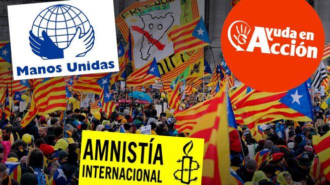 Ayuda en Acción, Manos Unidas y Amnistía también integran la plataforma que ayudó a los golpistas