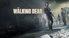 Octava temporada de 'The Walking Dead'.