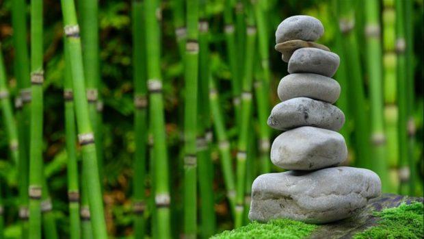 C mo crear tu jard n zen de forma f cil paso a paso - Hacer jardin zen ...