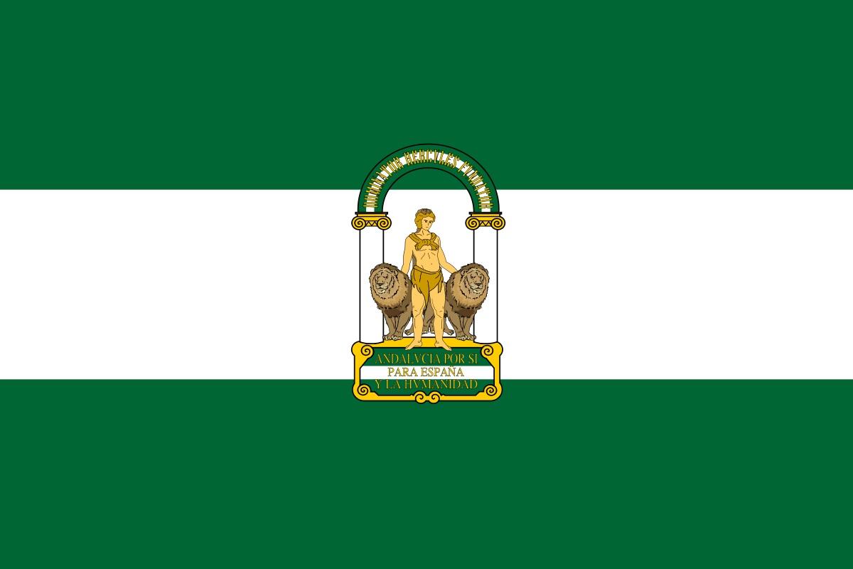 Roban dos veces en una semana la bandera de Andalucía del hospital de Jerez