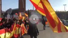 Los constitucionalistas reciben a Felipe VI con banderas de España en Barcelona