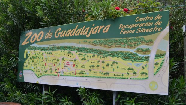 Qué ver en Guadalajara