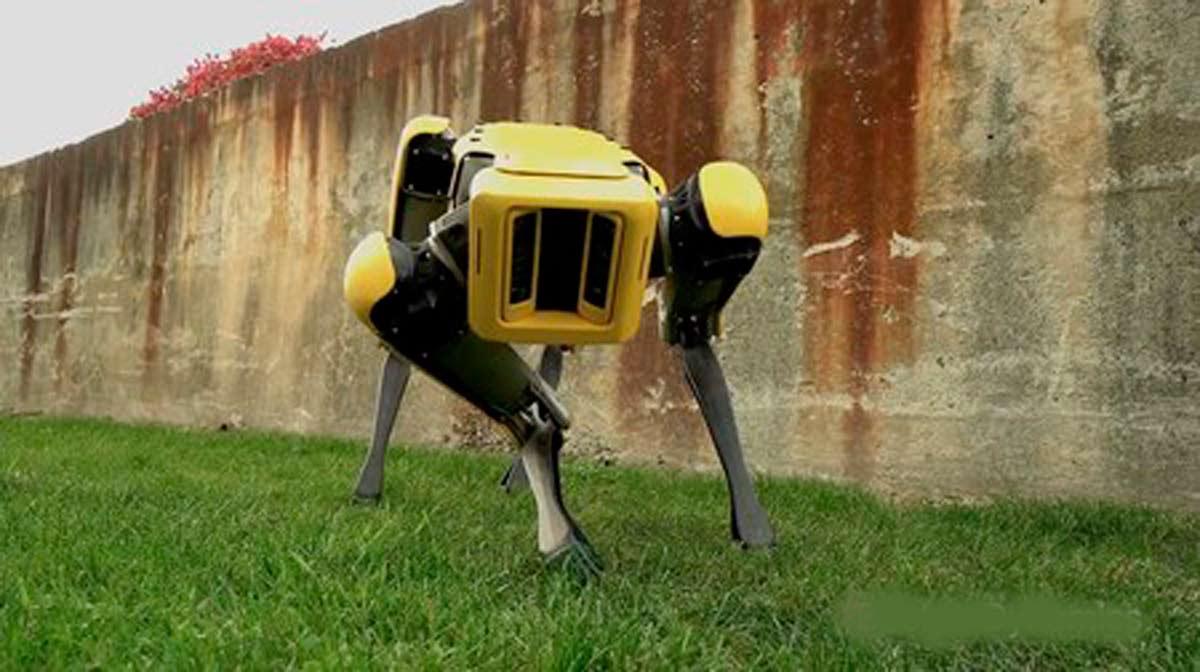 Aspecto del perro robot de Boston Dynamics