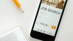 Descubre todas las claves para buscar y encontrar un buen trabajo.