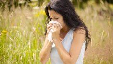 El aloe vera, la miel o los cítricos son de gran ayuda para combatir la alergia.