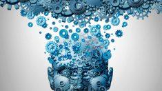 Las claves de la conciencia humana