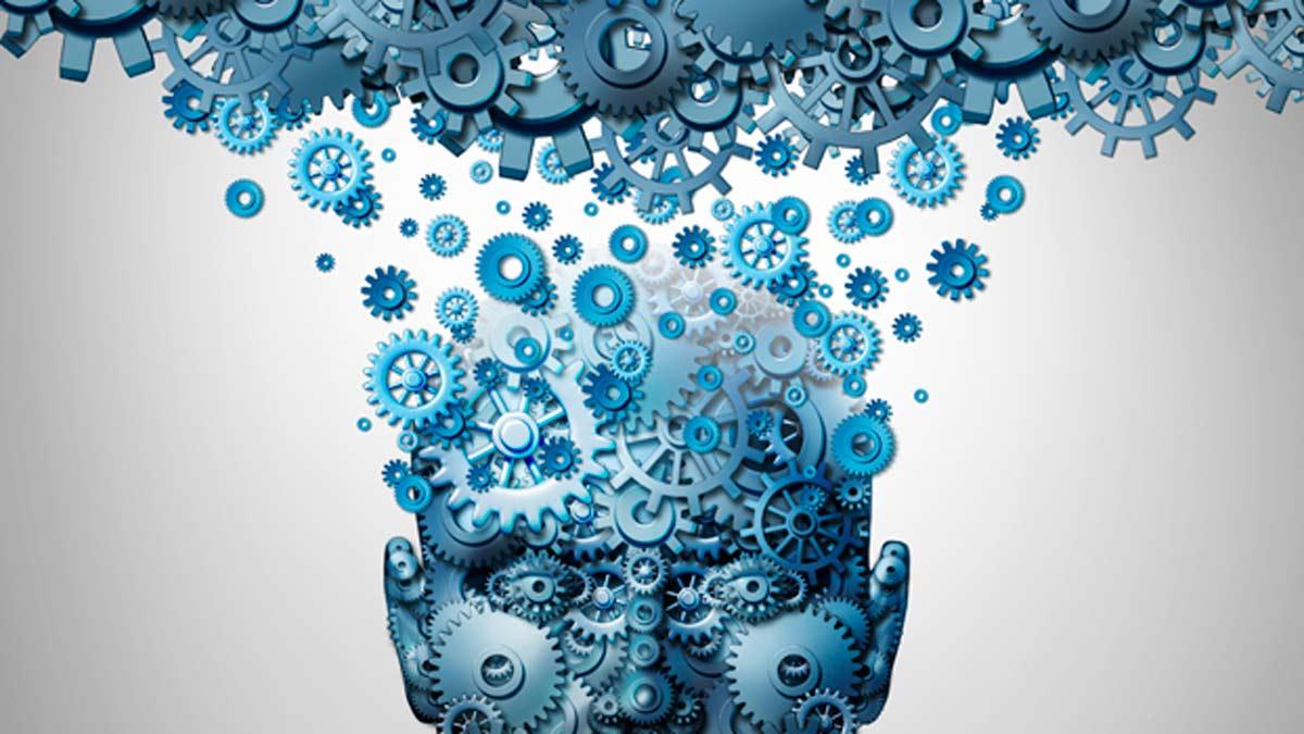 Cu l es el verdadero origen de la conciencia humana for Cual es el significado de arquitectura