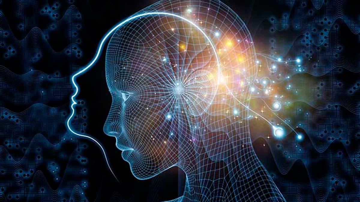 Resultado de imagen de La conciencia humana