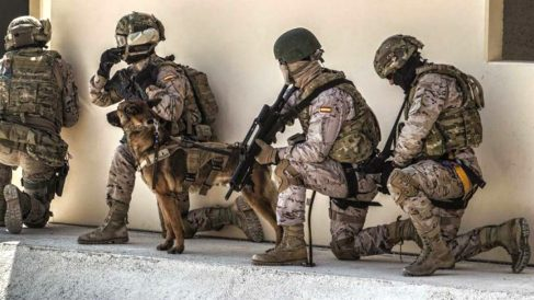 Militares del Ejército de Tierra, en ejercicios de unas maniobras.